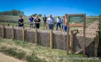 Erosiebestrijdingswerken Opperbusingenstraat in Lennik afgerond - Landbouwleven