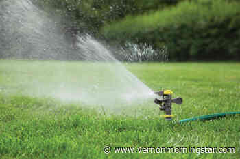 Outdoor watering restrictions return to RDCO for the season – Vernon Morning Star - Vernon Morning Star