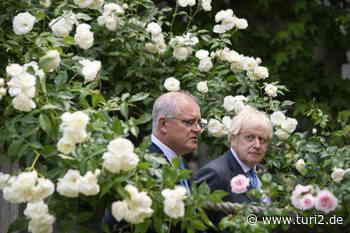 Bild des Tages: Politiker im Rosengarten.   turi2 - turi2