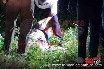 Homem é executado a tiros em área de chácara em Ariquemes - Rondônia Dinâmica