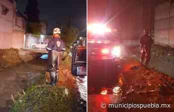Se inunda Álamos Vista Hermosa al desbordarse río en Puebla - Municipios Puebla
