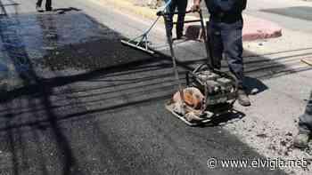 Realiza Gobierno Municipal raspado en 200 kilómetros del Valle de Guadalupe - El Vigia.net