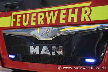 Brand auf Bauernhof in Vlotho - 26 Mastbullen tot - Radio Westfalica