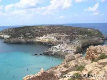 """In vacanza per un """"ritocchino"""": Lampedusa meta del turismo estetico - Canicatti Web Notizie"""