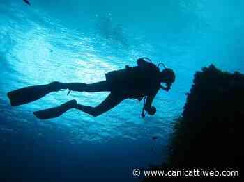 A Lampedusa sub impegnati nella pulizia straordinaria dei fondali dell'isola - Canicatti Web Notizie