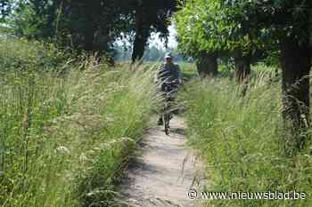 Fietsroutenetwerk Limburg: soms hobbelt en kriebelt het ook