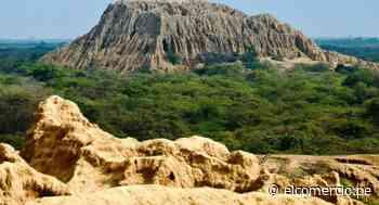 Santuario Histórico Bosque de Pómac: todo lo que debes saber de este atractivo de Lambayeque - El Comercio Perú