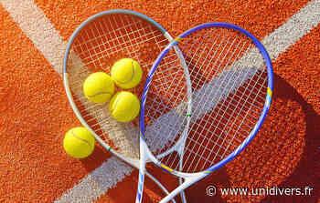 Stage de tennis Stade de la Montée Rouge 86100 CHATELLERAULT mardi 27 juillet 2021 - Unidivers