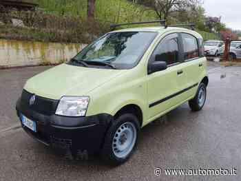 Vendo Fiat Panda 1.2 4x4 usata a Terranuova Bracciolini, Arezzo (codice 8892570) - Automoto.it - Automoto.it