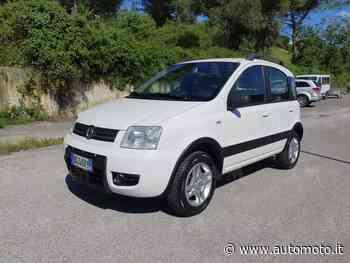 Vendo Fiat Panda 1.2 Climbing Natural Power usata a Terranuova Bracciolini, Arezzo (codice 8892576) - Automoto.it - Automoto.it