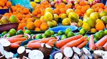 Produtores rurais de Vila Velha vão fornecer alimentos para merenda escolar - ES Hoje