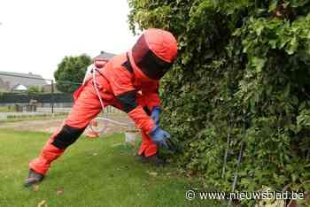 """Brandweermannen Nick en Michiel zijn klaar voor het 'wespenseizoen': """"Mensen van overlast verlossen maakt job leuk"""""""