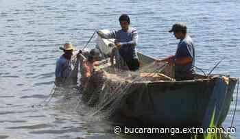 Pescadores de Buenaventura piden reversar decreto regulatorio en el Pacífico colombiano - Extra Bucaramanga