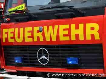 Nach Waldbränden bei Zeuthen: Polizei sucht Zeugen - Niederlausitz Aktuell - NIEDERLAUSITZ aktuell