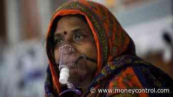 Coronavirus News Live Updates: Serum Institute may launch Novavax's COVID-19 vaccine in India by... - Moneycontrol