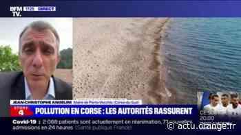 """Le maire de Porto-Vecchio espère des sanctions """"exemplaires"""" contre les responsables de la pollution en Corse - Actu Orange"""