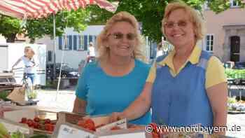 Schwabach: Seit 43 Jahren Urlaub als Marktfrau - Nordbayern.de