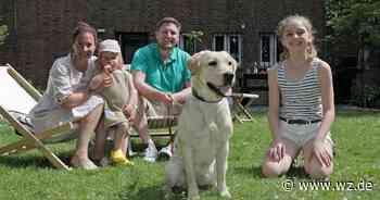"""Krefeld: Happy End für """"Corona-Hund"""" Labrador Lani - Westdeutsche Zeitung"""