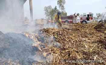 Se incendian pacas cerca de El Taballal, Salvador Alvarado - Debate
