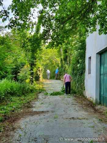 Cerreto di Spoleto, pulizia del percorso di forcatura - Umbriadomani