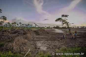 Tribo Tapeba denuncia suposta exploração ilegal de área demarcada em Caucaia - O POVO