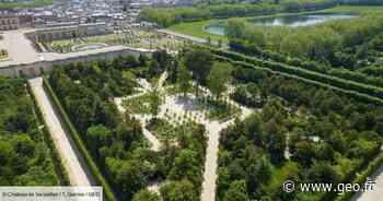 Versailles rouvre le bosquet de la reine Marie-Antoinette après deux ans de restauration - GEO