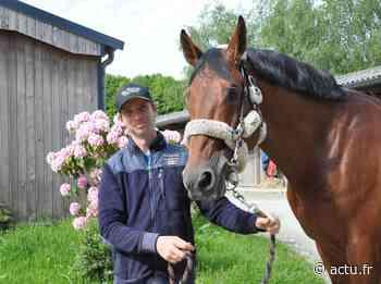 Près de Dinan : son cheval s'appelle Bond James Bond et vise les jeux olympiques - Le Petit Bleu