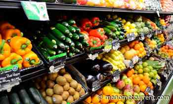 India Organic Food Market Share, Size, Growth, Trends, Key Players, Industry Demand and Opportunities by 2026 – The Manomet Current - The Manomet Current