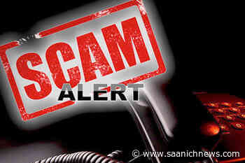 Tips to avoid scams targeting Vancouver Island seniors - Saanich News