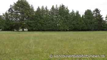 Saanich turns to Victoria, Oak Bay for help with purchasing urban green space - CTV Edmonton