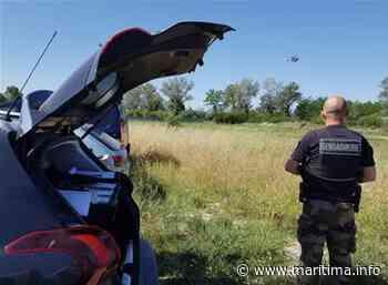 Opération anti stupéfiants de la gendarmerie à Aix et Pertuis - Aix en Provence - Faits-divers - Maritima.info