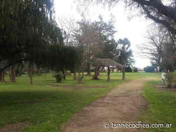 Encontraron un feto humano en un parque de Tres Arroyos - TSN Noticias