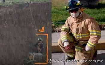 Él es Héctor Pimentel, el bombero que rescató a Spay y Spike del socavón de Puebla - El Sol de Puebla