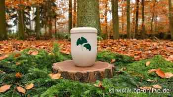 Möglichkeiten sind begrenzt: Hauptausschuss berät über Friedwald in Maintal - op-online.de