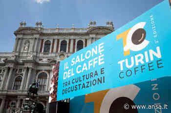 Turin Coffee si fa nazionale, quarta edizione a settembre - Agenzia ANSA