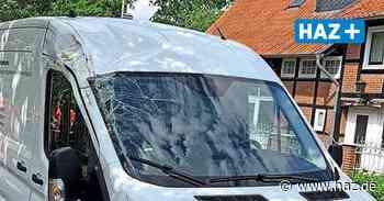 Sehnde: Baum stürzt auf fahrenden Transporter in Bolzum - Hannoversche Allgemeine