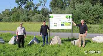 Hochwasserdamm zwischen Eggenstein und Dettenheim ist fertig - BNN - Badische Neueste Nachrichten