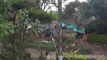 Habitantes de la Ciudadela Simón Bolívar denuncian expendio de drogas en una invasión del sector - Ondas de Ibagué