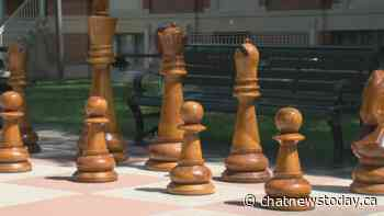 World's Largest Chess set back for another summer in Medicine Hat - CHAT News Today