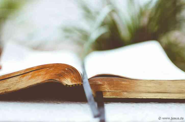 Das Manifest (8): Bitte predigt genau dieses Evangelium!