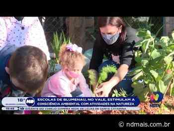 Escolas de Blumenau estimulam a consciência ambiental com atividades na natureza - ND Mais