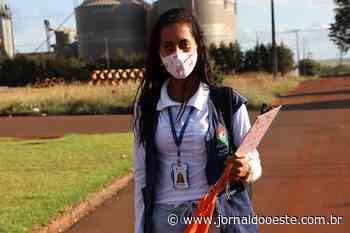 Assis Chateaubriand é destaque em Campanha Digital de Combate à Dengue – Jornal do Oeste - Jornal do Oeste