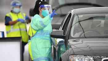 NSW authorities uncover second case of coronavirus in Sydney - SBS News