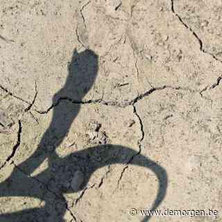 Daar is de droogte weer: wat is er aan de hand en wat kunnen we er zelf aan doen?