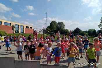 De Boomgaard feest coronaproof (Borgloon) - Het Belang van Limburg Mobile - Het Belang van Limburg