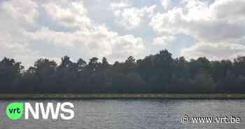 Limburgs Landschap kan deel van natuurgebied Groene Delle in Lummen kopen, dankzij crowdfunding - VRT NWS