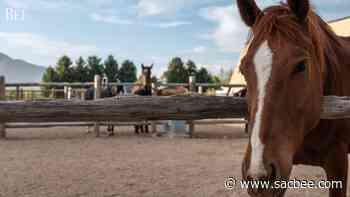 Utah horse ranch of Robert Redford for sale - Sacramento Bee