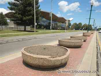 Dorr Street planters empty as city experiences delays with growers