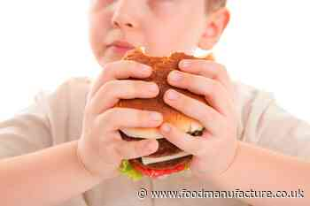 Ultra-processed food report risks demonising healthy options: BNF - FoodManufacture.co.uk