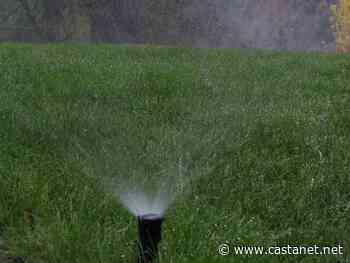 Water restrictions arrive for Regional District of Central Okanagan homes - Kelowna News - Castanet.net